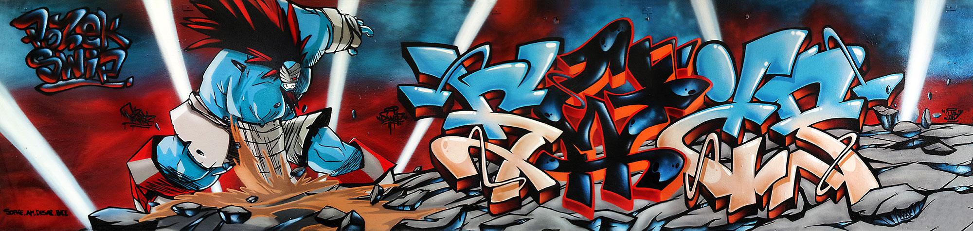 Ankama-graffiti-fresque-deco-graffiti-toulouse-swip-swiponer-wxp