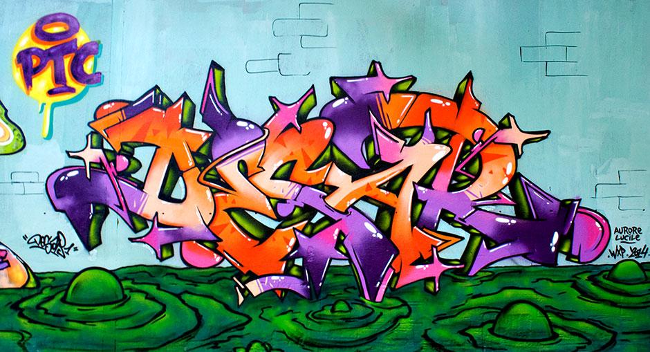 Les-crados-desar-deco-graff-graffiti-toulouse-swip-swiponer-wxp-31