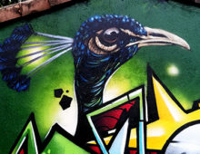 Graffiti Paon
